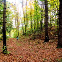 escursioni sui sentieri naturalistici a cividale